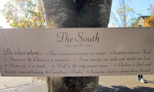 thesouth