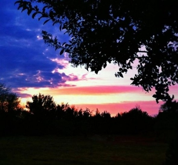 Clouds of freedom. TFM.