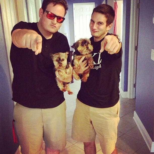 Matching miniature frat hounds. TFM.